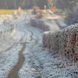 Winterpad Nijmegen