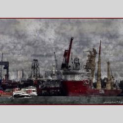 Harbour's art