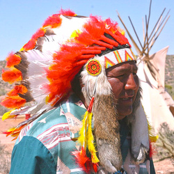 chief of the Hualapai tribe