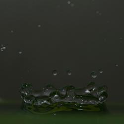 Bakje water