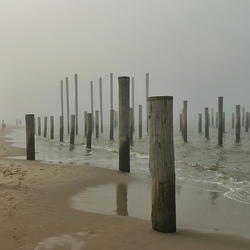 Palendorp Petten (NH) in the mist