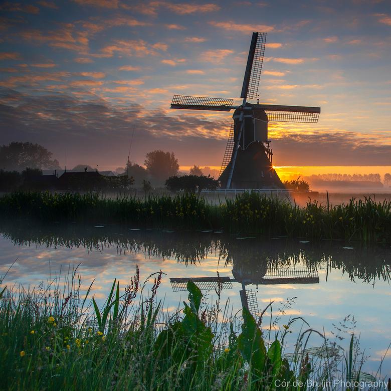 Zonsopkomst in de polder - De zon kwam op in de polder bij een mistige ochtend in mei