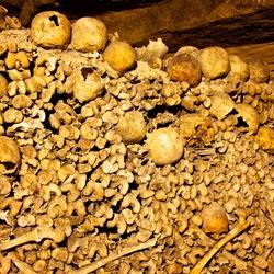 Een hoop botten en schedels