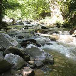 bergrivier in zuid bulgarije