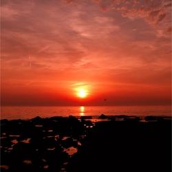 Sunset Den-Haag