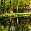 Bos van Ypey