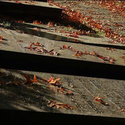 herfst op het kerkhof...............