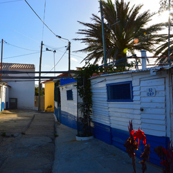 Streets of Porto Santo II
