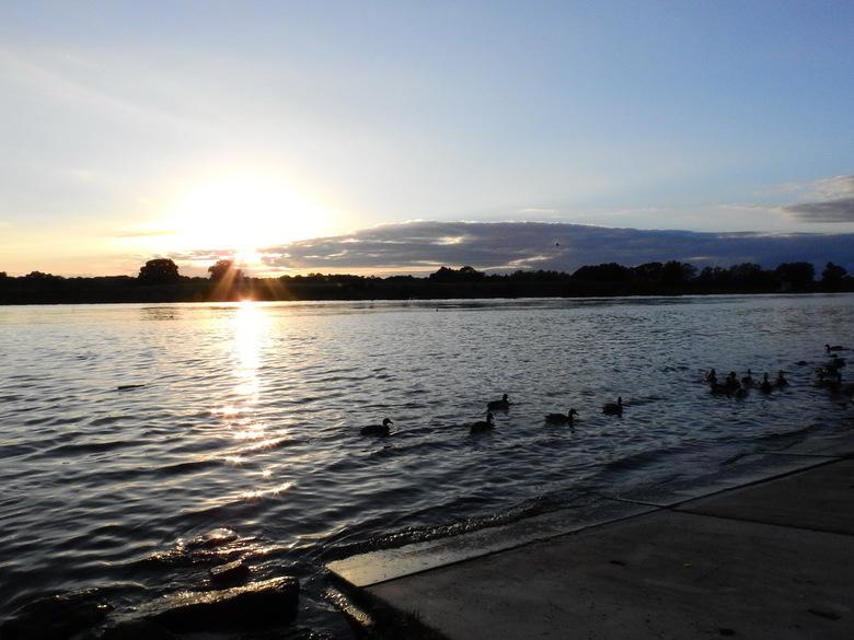 zonsondergang aan de maas in Arcen -