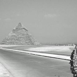 Pyramids & horse