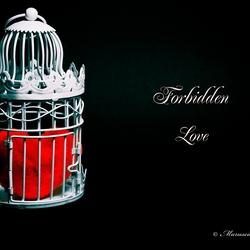 Verboden Liefde