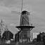 De molen in Delft