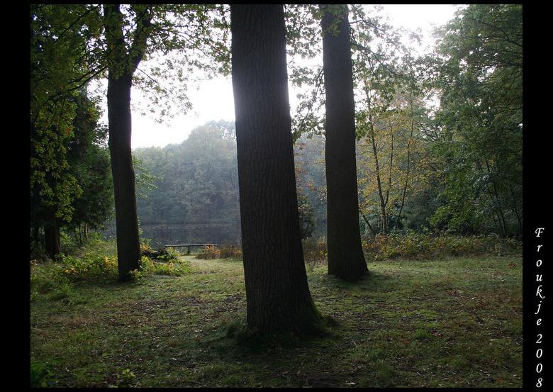 herfst - Een middagje bos heeft dit opgeleverd .<br /> Bedankt voor de mooie reacties op mijn foto van de koperwiek .<br /> Groetjes Froukje