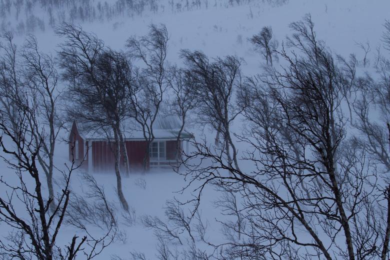 Maartse sneeuwbui op de Lofoten - Een plotseling opkomende sneeuwstorm op het eiland Senja in Noorwegen, een prachtig moment om vast te leggen.