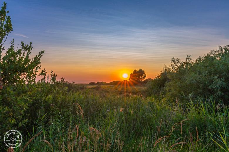 Een zonsondergang midden in de natuur - Wat een prachtige avond was dit. Een huifkartocht over de Slikken van Flakkee en dan eindigen met zo'n zo