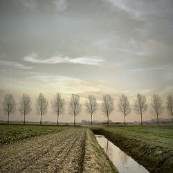 a fine landscape