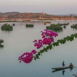 riviergezicht met bougainville