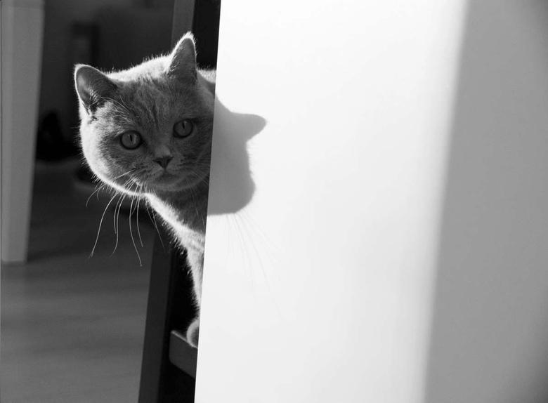 Schaduw - Voor een fotoreportage heb ik deze zwart wit foto's gemaakt