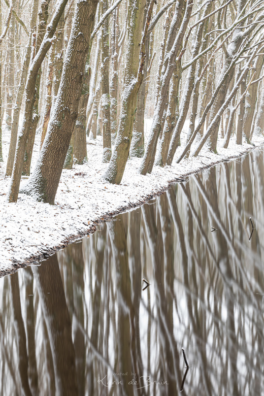 Snow Reflection! -