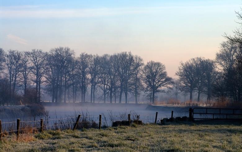 Mistig landschap - Wat bomen. Een riviertje. Een flardje mist. En een hekje.