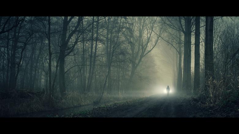 Shiver - [view full screen in a dark setting]
