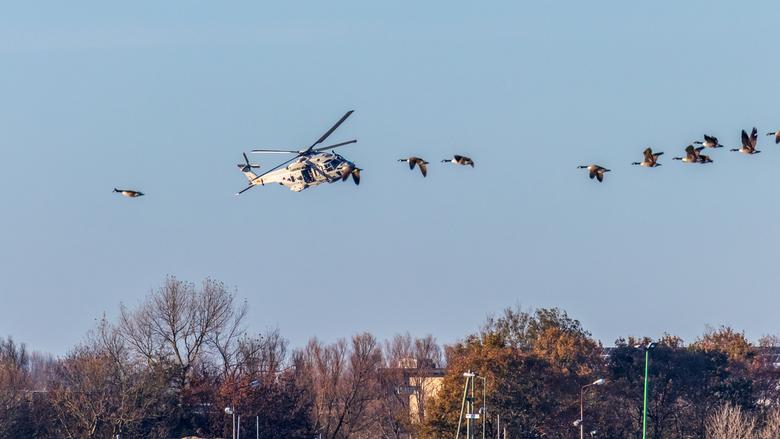 Heli en Ganzen - De helikopter cirkelde boven vliegveld De Kooy ( deur open en fotograaf bezig - zo lijkt het - ) en een vlucht ganzen die optisch lij