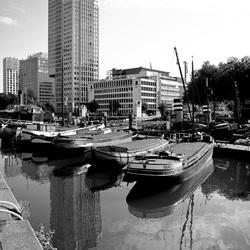 Leuvehaven, Rotterdam