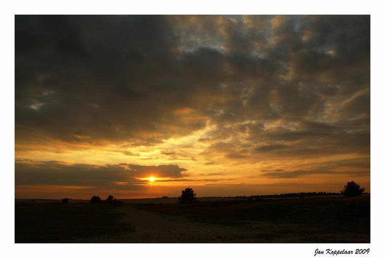 Sunset Hoge Veluwe - Eentje van afgelopen weken. Nog even na de bronst een sunset pakken.<br /> <br /> Bedankt voor de reacties. <br /> <br /> Gro