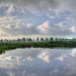 Spiegel landschap
