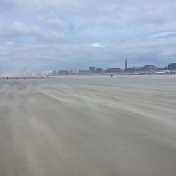 ZandWindSurfers.jpg
