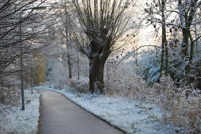 winter 2010 - Langs de Potmarge Leeuwarden