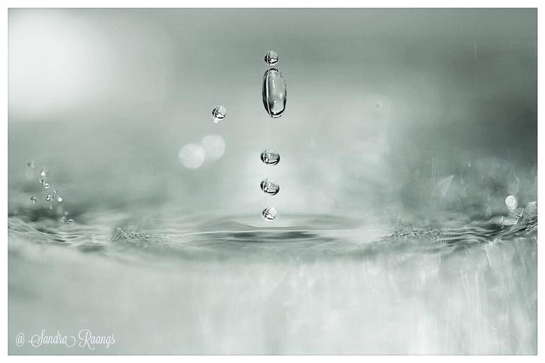 Waterdruppels -
