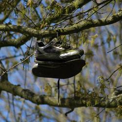 afgedankte schoenen