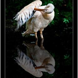 Spiegeltje, spiegeltje