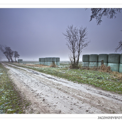 Een loodgrijze januari-avond (2)