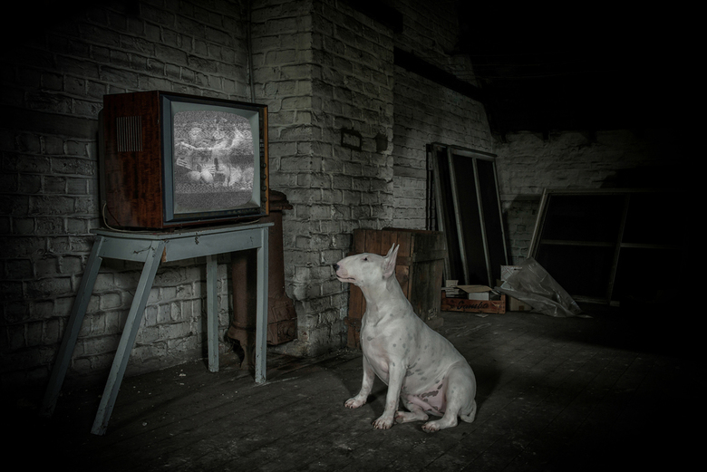 Urbex TV