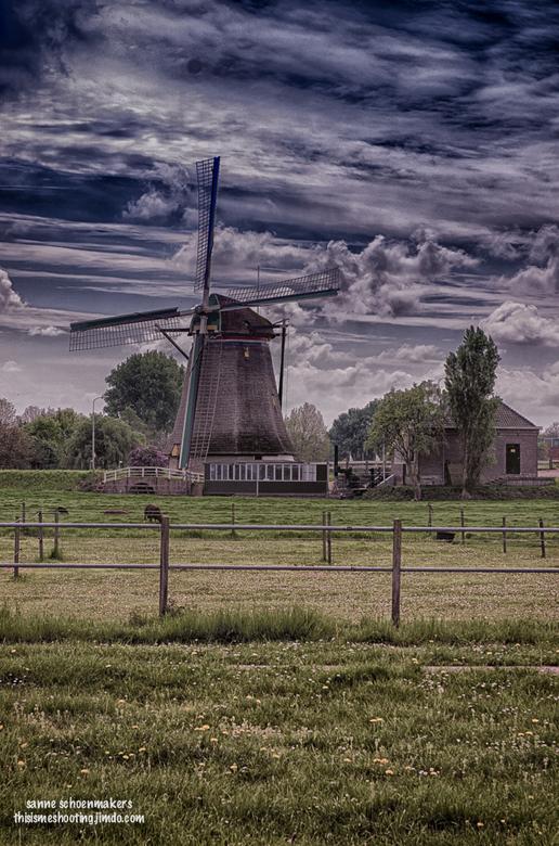 Daar bij die molen... - Wederom weer de poldermolen in Maasland.<br /> Bewerkt in kleur en gespiegeld
