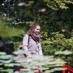 Reflectie in de vijver van de Japanse Tuin