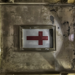 the famous red cross