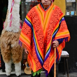 local in Lima
