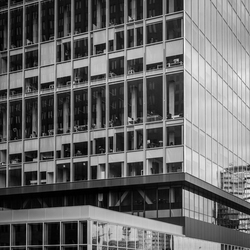 transperant city