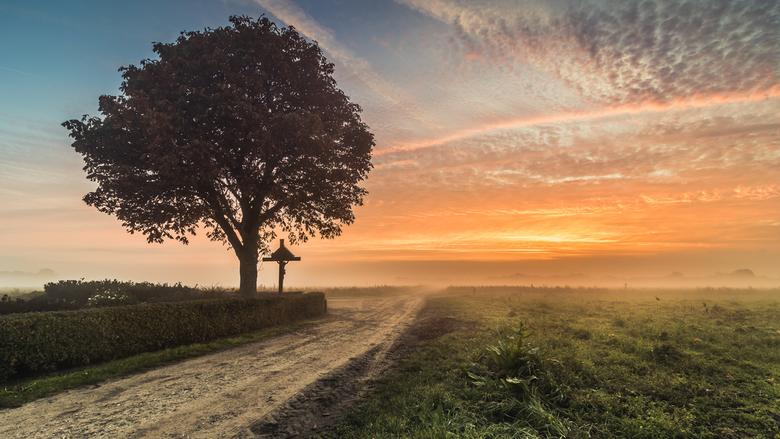 Mistige ochtend Het Groot Veld -