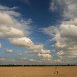 Wolken boven korenveld