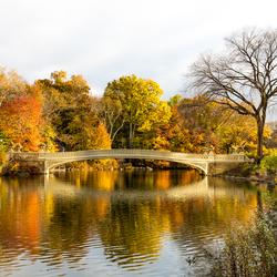 Central Park in de ochtend zon