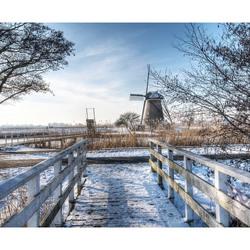Kinderdijk 2013.jpg
