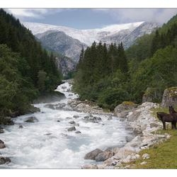 Folgefonn gletsjer, Buerdalen, Odda, Noorwegen