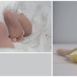 Baby: L e v i  II