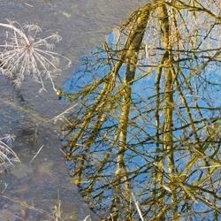 reflectie met ijs