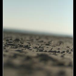 Scheve horizon
