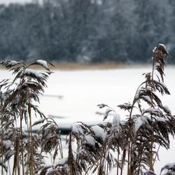 Koude winter in Finland